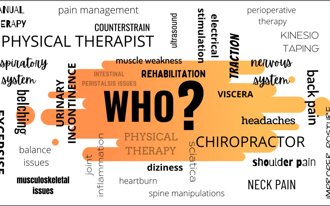A physical therapist or a chiropractor?